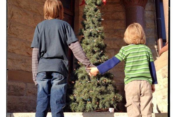 Boys and xmas tree