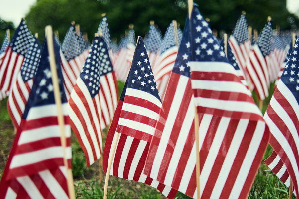 Small American flags grouped on a lawn