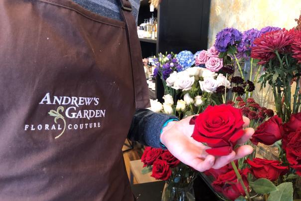 Andrew's Garden