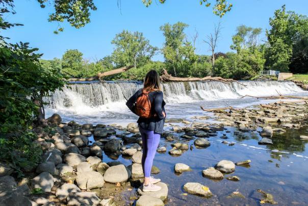 Fullersburg Woods - Nature trail