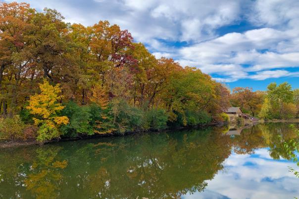 Fullersburg Woods - Fall