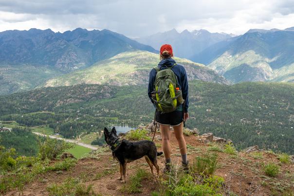 Dog at Castle Rock Peak, Durango, Colorado