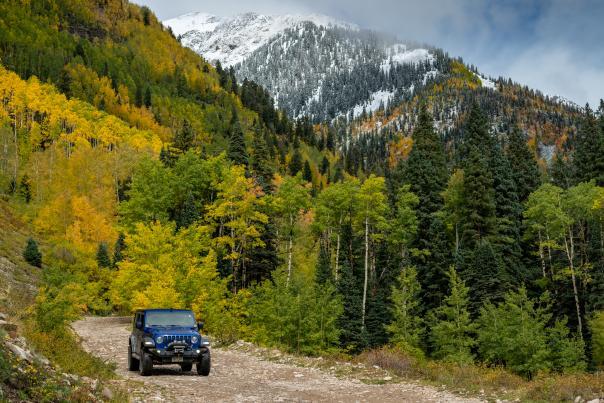 La Plata Canyon Drive in Fall, Durango, CO