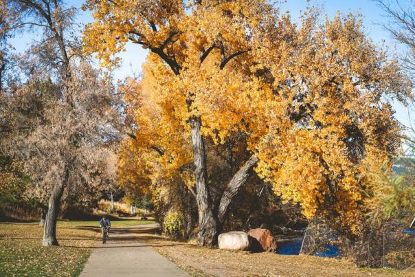 6 Reasons Durango is the Best Town to Spend Thanksgiving