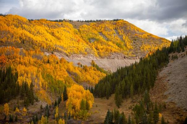 Seven of the Best Places to See Durango's Fall Colors