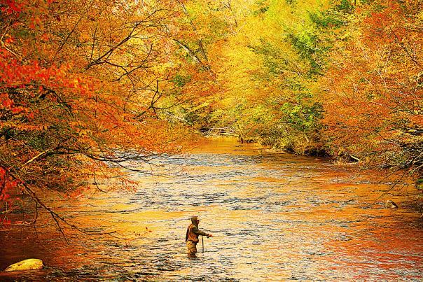 Fall Fishing on the Animas River