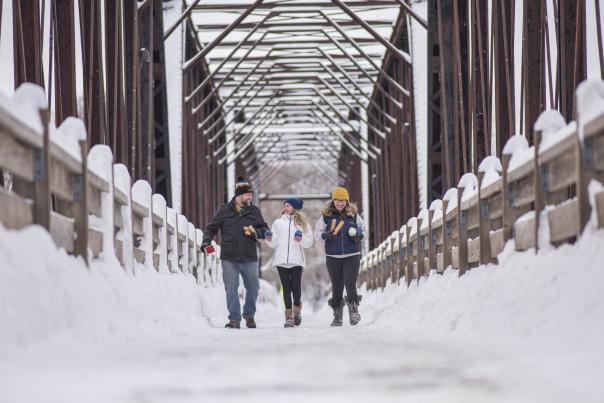 Phoenix Park Bridge for Winter Kubb