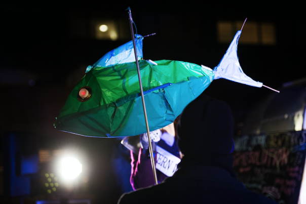 Fish Lantern LUEC 2017