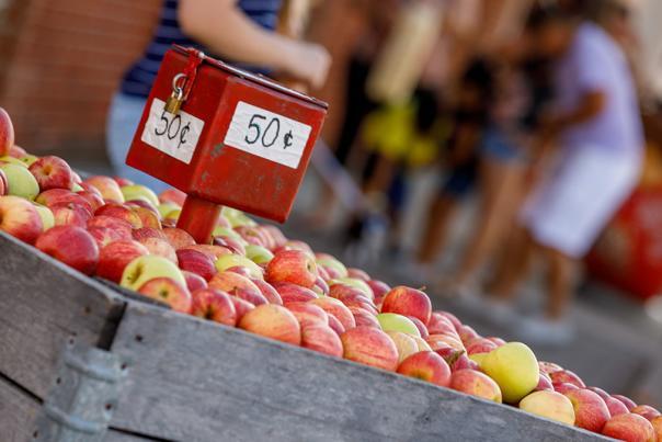 Nappanee-Apple-Festival-Blog