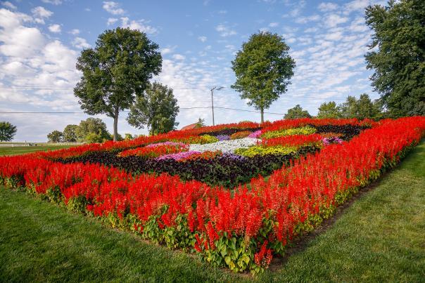 Quilt Gardens 2017 256