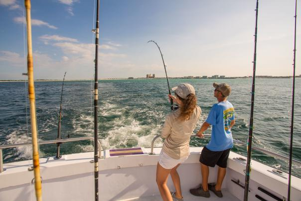 Blog - Sharks in Destin Waters