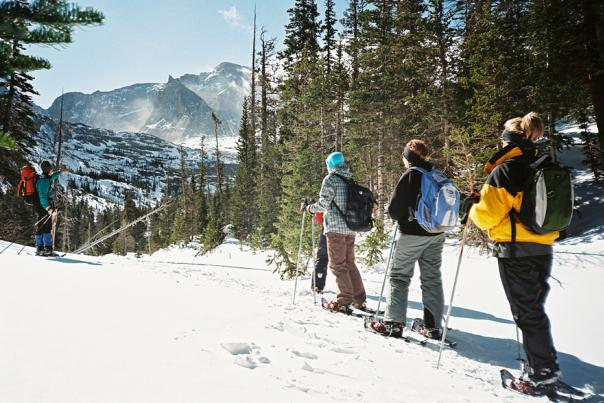 Winter Ecology: A Snowshoeing Trek for Kids & Families - Image