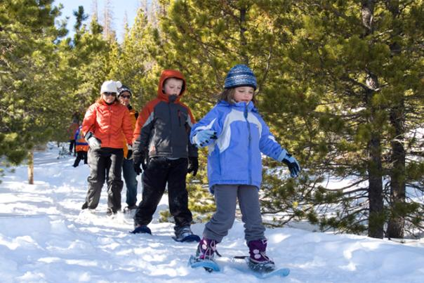 Family Snowshoe in the Woods
