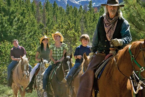 Horseback Group Cowboy