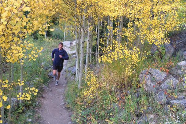 TT_Trail-Runner_Aspens_Credit-Active-at-Altitude