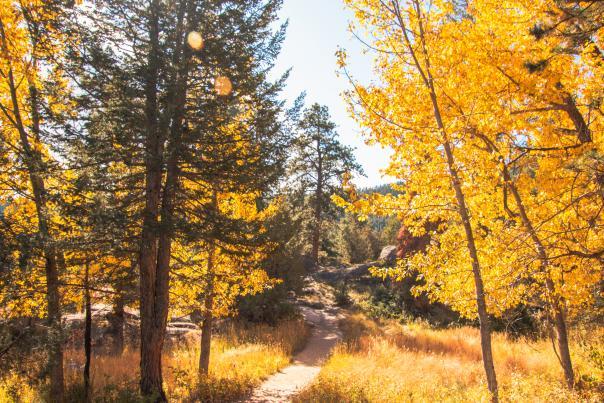 fall rocky mountain national park