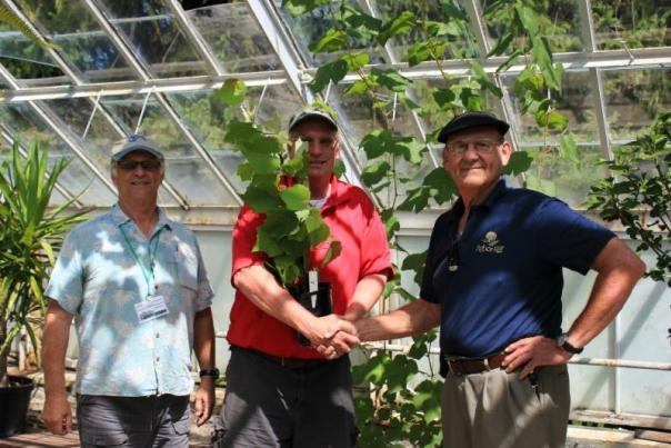 Isabella grapevine from Arbor Hill Winery is presented to Sonnenberg Gardens