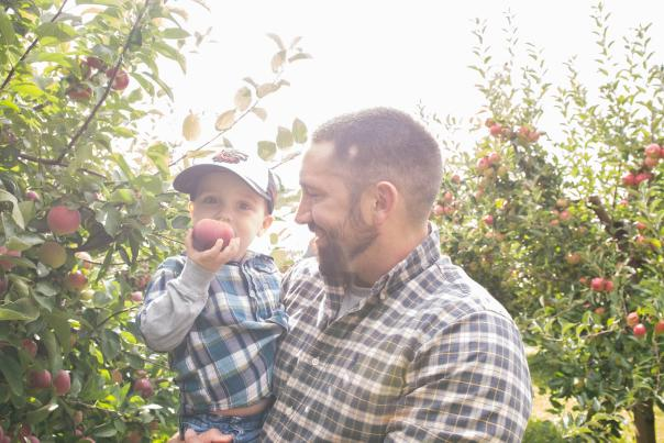 Apple Picking Fun at the Apple Farm