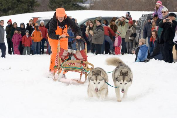 ganondagan-victor-winter-games-dog-sled-race