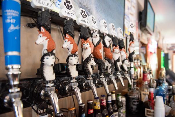 Three Huskies Tap Handles at Dobber's