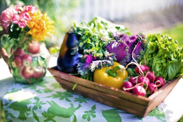 sonnenberg-edible-landscaping