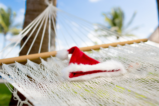 holidays in a hammock