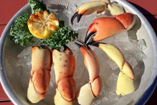 Stone Crab Golden Lion Cafe