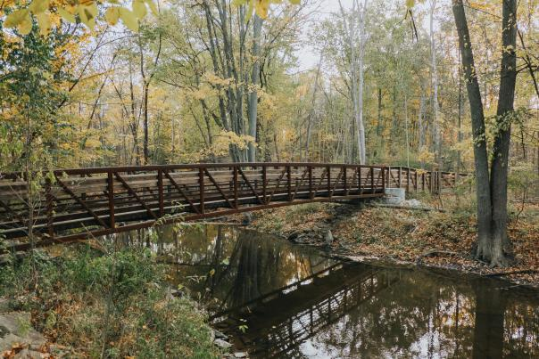 One of four scenic bridges visitors can cross when visiting the 383 acre For-Mar Nature Preserve & Arboretum