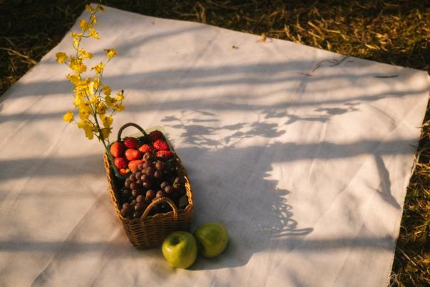 Fruit in a basket on a white blank