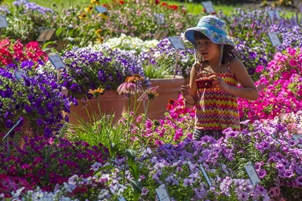 CSU Flower Trial Gardens Girl