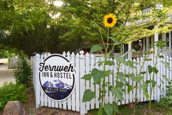 Exterior---Sunflowers