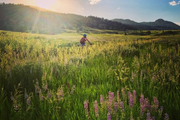 Mountain Biking in Fort Collins