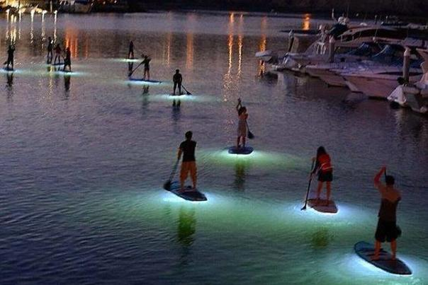 What's SUP night glow paddle