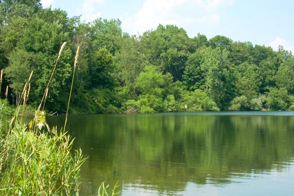 Allen County Parks Lake Blog Header