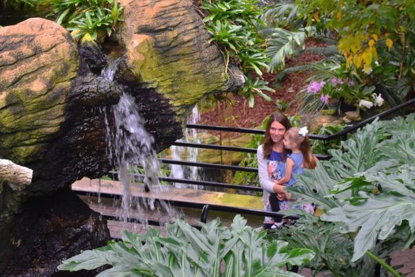 Copy of Botanical Conservatory - Tropical Garden