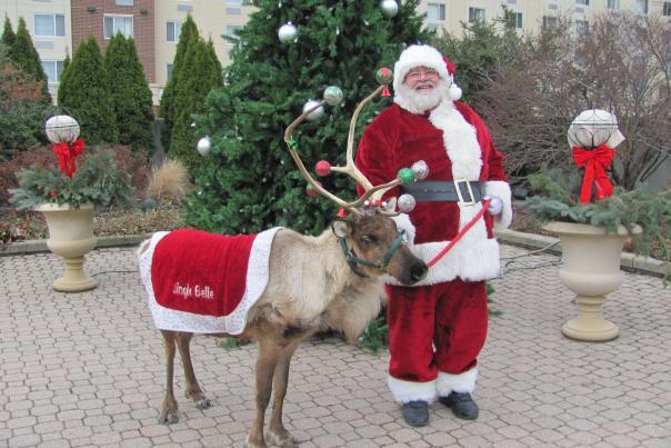 Santa & reindeer at Botanical Conservatory