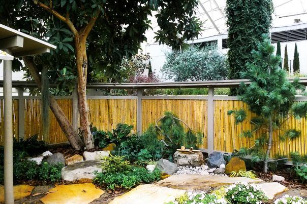 Japanese Garden Botanical Conservatory