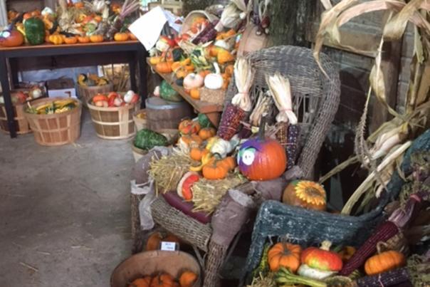 Hilger's Family Farm Interior