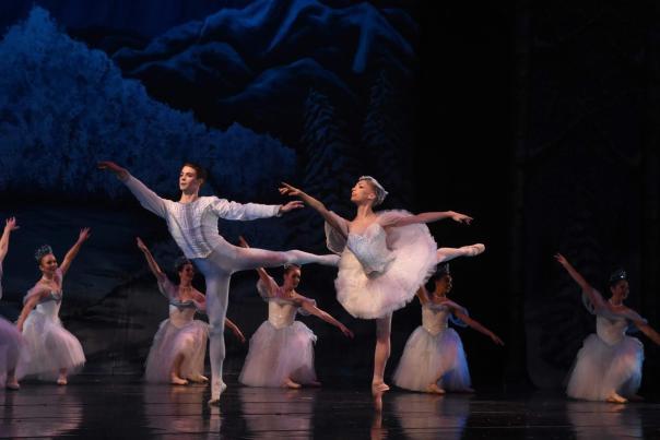 Swan Lake - Fort Wayne Ballet - Dancing