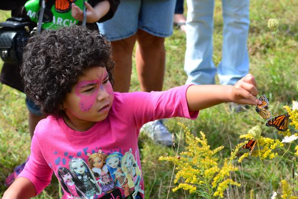 Little girl tagging a Monarch Butterfly at Monarch Festival in Fort Wayne, Indiana