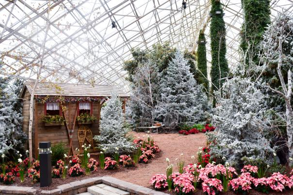 Botanical Conservatory Snow Days