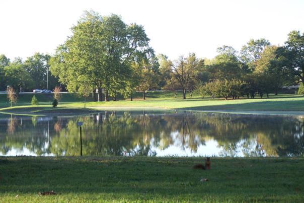 Swinney Park