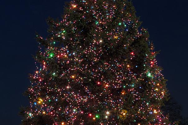 Broadway Christmas Tree
