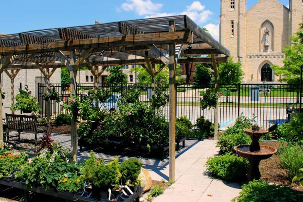 Botanical Conservatory Terrace
