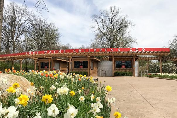Fort Wayne Children's Zoo with Spring Flowers - Indianan
