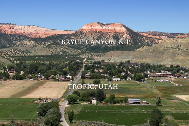 9163-Tropic-Utah