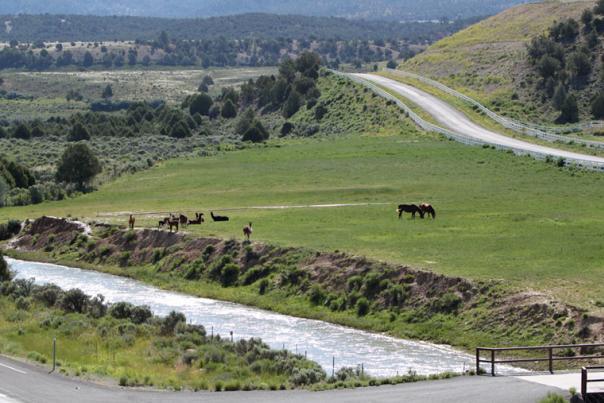 Highway89-Utah
