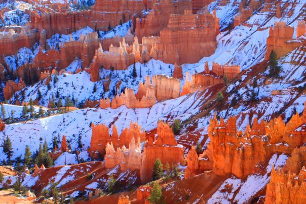 bryce-canyon-1417