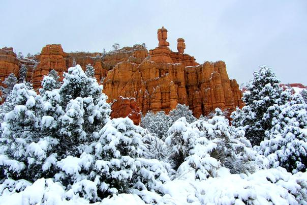 bryce-winter-1