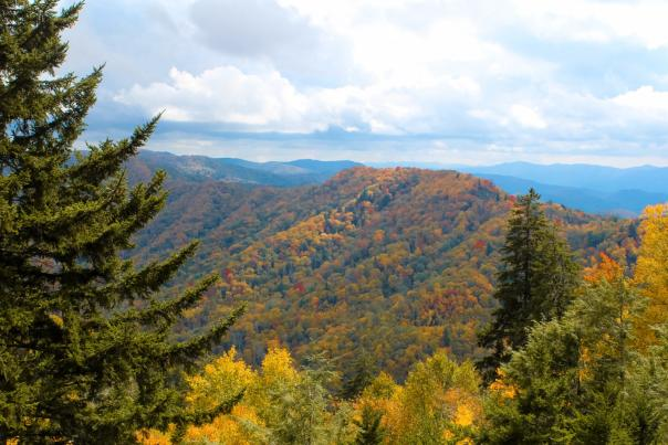 Newfound_Gap_Gatlinburg_Best_Fall